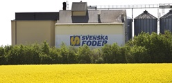 Carsten Klausen continues as CEO of Svenska Foder